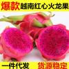 越南红心火龙果5斤装当季新鲜水果一件代发金都一号红肉火龙果