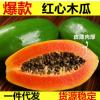 海南红心木瓜8斤包邮新鲜水果红心木瓜产地现摘一件代发