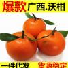 广西特产沃柑5斤装包邮一件代发新鲜水果产地直供皇帝柑丑柑
