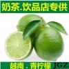 越南无籽青柠檬非黄柠檬新鲜水果5斤装包邮一件代发