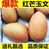 芒果供应 玉文红芒果8斤装一件代发 新鲜水果大青芒金煌芒贵妃芒
