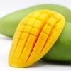 越南芒果大青芒8斤装 青皮香芒玉芒金煌芒新鲜水果一件代发