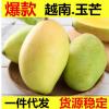 越南芒果玉芒5斤装包邮热带新鲜水果青芒小香芒大青芒一件代发