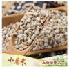 批发小薏米五谷杂粮小粒贵州小薏仁米薏米仁苡米薏仁米