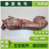 大量供应兔肉新鲜生兔头冷冻兔肉肉味鲜美源自绿色