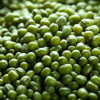 供应本地优质绿豆