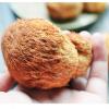【2017】特产山货猴头菇干500g一件食用菌养胃产地基地
