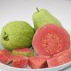 福建红心芭乐新鲜水果5斤装当季胭脂红番石榴8-12个