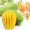 广西直发特甜玉芒8斤香芒特级玉芒新鲜包邮越南青芒热带芒果