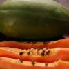 海南木瓜8斤红心木瓜一件代发包邮批发现摘香甜木瓜水果
