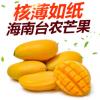 芒果小台农9斤新鲜水果一件代发批发包邮海南鸡蛋芒热带小台农芒