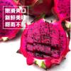 新鲜红心火龙果5斤装中果包邮一件代发水果广西金都一号产地现摘