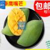 现采现摘新鲜9斤大芒果鹰嘴芒果批发 海南水果一件代发包邮青芒