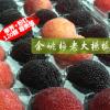 荸荠种粉红种混装杨梅鲜果 箱装余姚杨梅鲜果批发 顺丰冷链