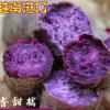 越南进口紫薯 珍珠紫薯地瓜紫色番薯5斤/包邮一件代发