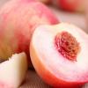 供应果园现摘新鲜水蜜桃甜脆孕妇有机水果桃子 无农残
