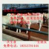黑龙江省 夏洛莱牛 夏洛莱牛养殖 夏洛莱牛价格 西门塔尔牛