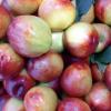 安徽特产农村直供油桃 新鲜水果 优质油桃