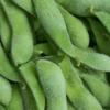 新鲜有机 青毛豆 绿毛豆 毛豆荚 生毛豆 带壳青豆精品优质毛豆角