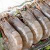 新鲜大虾大量供应