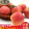 新鲜甜脆水果红富士苹果 安徽涡阳糖心有机苹果水果批发10斤一箱