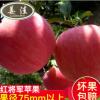 原产地直销水果 新鲜有机苹果 绿色水果红将军苹果水果一件代发