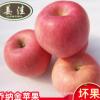 原产地直销水果 水果苹果批发 新鲜有机乔纳金苹果水果一件代发