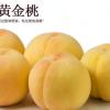 安徽特产农村直供黄桃 新鲜水果 优质黄桃