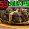 现货正宗阳澄湖大闸蟹鲜活公螃蟹4.0-4.5母蟹3.0-3.5两10只礼盒装