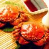 大蟹公母套餐 4公(4.0-4.4两)4母(3.0-3.4两)