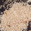优质低价批发供应 非转基因农家自产有机燕麦米