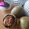 罗汉果东方神果桂林特产凉茶饮料原材料花果茶低温烘烤一件包邮