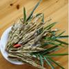 杭州特色休闲小吃 临安天然直尖烹饪竹笋干 密封袋装天目新鲜竹笋