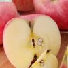 陕西特产白水国家认证有机红富士苹果新鲜脆甜孕妇水果2只包邮