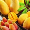大量供应精品贵妃芒果10斤装果肉细腻果味甜