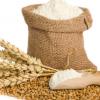 厂家直销 纯天然石磨小麦面粉 全麦高筋小麦面粉 营养粗粮全麦粉