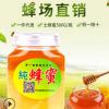 农家自产 土蜂蜜 新鲜桶装蜂蜜 成熟农家土蜂蜜 散装批发 包邮