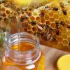 阿忠天然深山土蜂蜜农家自产加散装瓶罐装野生蜂蜜批发厂家500g