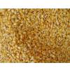 常年供应优质玉米 最新高产小麦
