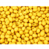 常年供应优质大豆
