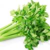 昌兴果蔬供应新鲜芹菜