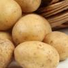 供应绿色农产品蔬菜 土豆