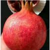 果园直销突尼斯软籽红水晶石榴非会理蒙自临潼石榴1级果6个4斤装