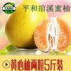 平和琯溪黄心蜜柚产地直发黄金柚子孕妇水果一件代发