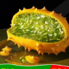 火参果,火星果,非洲角瓜,刺瓜鲜果大果批量出售!