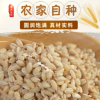 厂家供应农家自种大麦仁 大麦仁现货批发五谷杂粮煮粥量大从优
