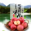 新果上市陕西红富士苹果 新鲜脆甜苹果 现摘发货红富士苹果