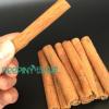 桂皮 广西特产优质肉桂烟桂 优质桂皮肉桂批发