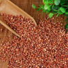 大量现货五谷杂粮高粱 袋装 食品加工原料 高粱批发 酿酒红高粱