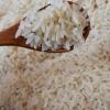 大米胚芽米1kg宝宝粥米婴儿童辅食大米新米晚粳米厂家直销批发